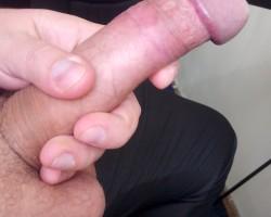 My Cock - 20 cm