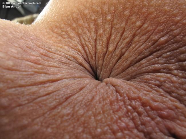 фото крупным планом ануса